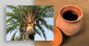 Amazing Facts You Didn't Know About Date Palm Jaggery (Khejur Gur)